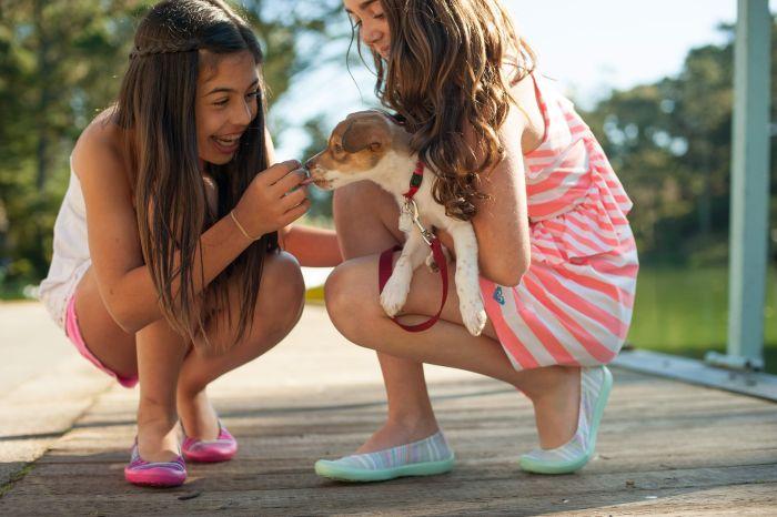 Copii care mângâie un câine