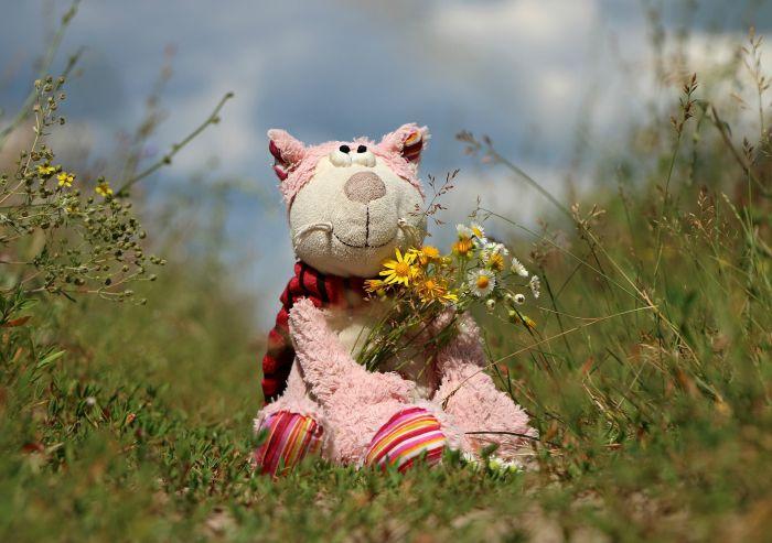 activitati de vara pentru copii jucarie de plus pe un camp cu flori