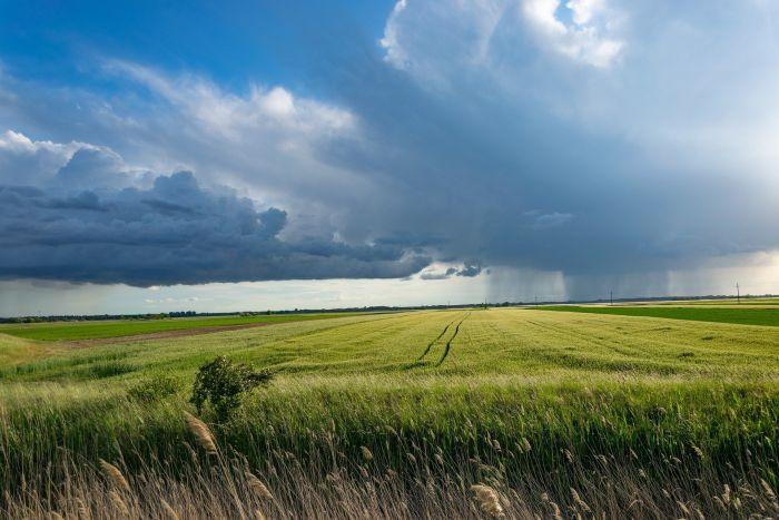 5 lucruri pe care să le faci vara dacă stai la curte: pregăteștecasa de furtună